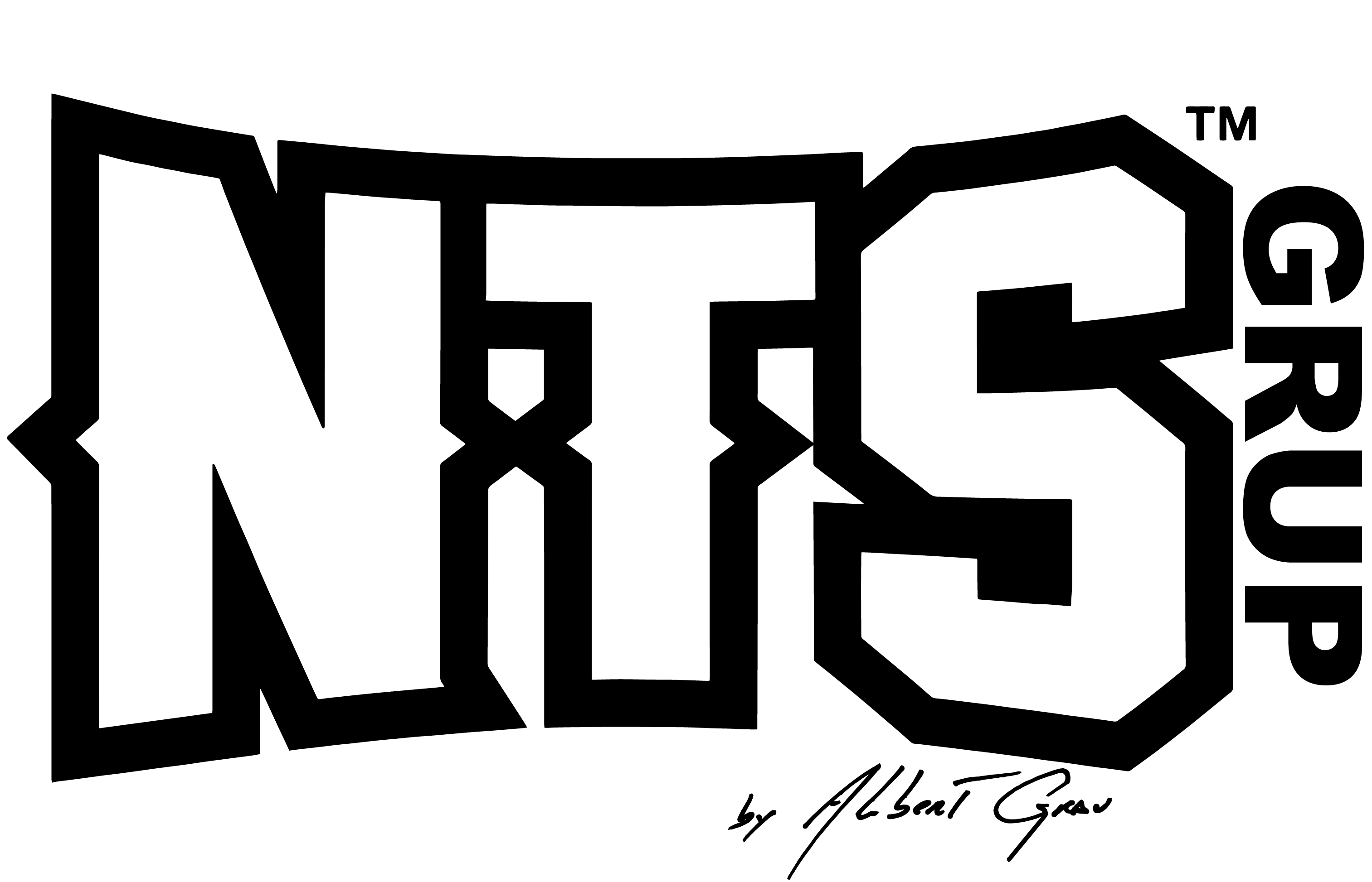 Logo NTS Grup